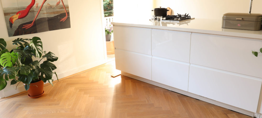 9x54 duoplank visgraat amsterdam